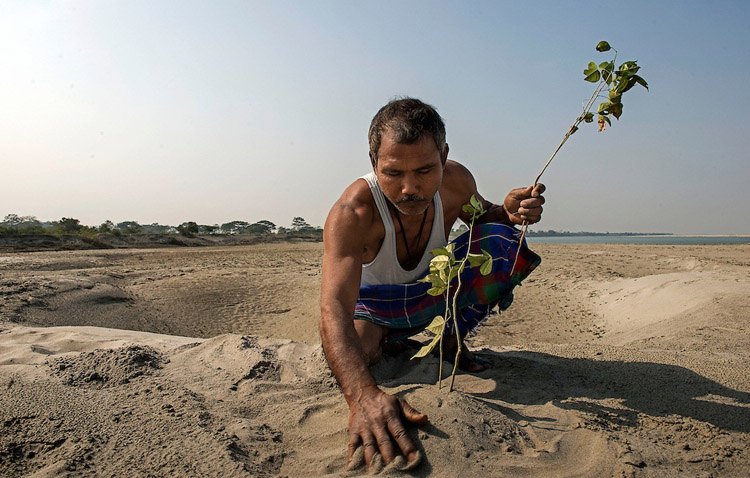"Jadav Mulai Paleng The Forest Man The story of Jadav Payeng Mulai could be the one told by the French writer Jean Giono in his book The Man Who Planted Trees.In fact he has planted a tropical forest of 1500 hectares on a sandbar in the heart of the Brahmaputra River which had been devastated by floods in 1979 , when Mulai was 16 years old. Trees, houses and villages were overwhelmed and taken away by the water. Many animals, snakes in particular, died. Mulai found them lifeless on the sand banks. It was the turning point of his life. He started planting bamboo trees on behalf of the forestry division. He has never stopped, choosing to plant trees, bringing animals and insects from his village and transforming the whole area into a real forest populated by birds and deer which in turn have attracted predators such as vultures and tigers, and even elephants and rhinos, which migrate from the nearby Kaziranga park.Jadav Mulai has been repeatedly awarded accolades for his efforts.Today, the inhabitants of the villages near the forest are proud of the work that has been done but the early years were not easy for Mulai. In fact, after some elephants destroyed a village many people blamed Mulai for what had happened and he had to ask for help and protection from the forest department .Now the forest is known by the name of ""Mulai Forest or Mulai Kathoni"". Jadav Payeng belongs to the ' Mising ' tribe and today lives in Kokilamukh , a village near the river Bramhaputra in the district of Jorhat , Assam. This state in North East India is where he dwells in a small hut which he shares with his wife Binita and their three children but he spends most of his time in the forest. Mulai knows each single tree and every path. He treats the forest with the affection and respect reserved for one's offspring.Today his new goal is to recommence a second bio diverse forest in another sand bar island in the Brahmaputra Area and teach the world the priceless heritage of biodiversity."