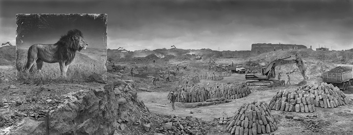 Nick Brandt inherit the dust afrika dogal yasam alani hayvanlar istila 13