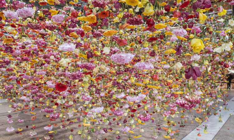 Rebecca Louise Law Berlin 30bin cicek 1