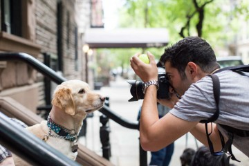 the dogist Elias Weiss Friedman her gun kopekleri fotografliyor belgesel kitap video proje 5